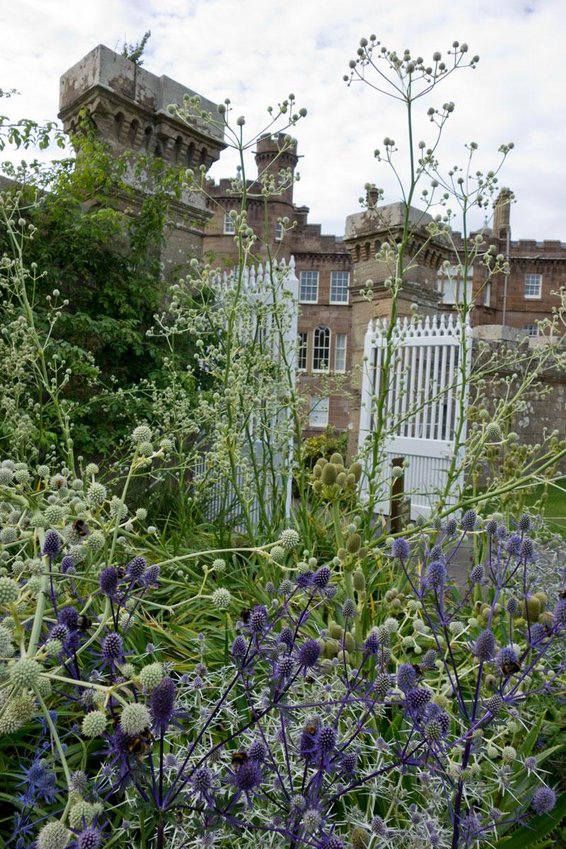 Schottland Luxusreise - Kombination aus NaturPur und alter Architektur