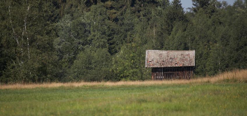 Architekturintegration - Inspiration Torfhütte