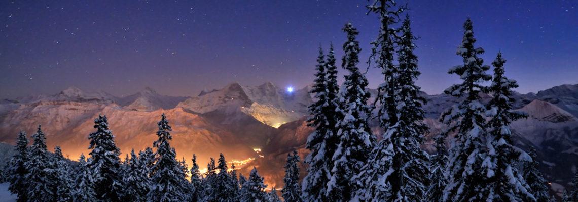 Naturfotografie Alpenregion - Niederhorn Schweiz