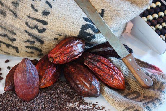 Chocolatier Oliver Coppeneur