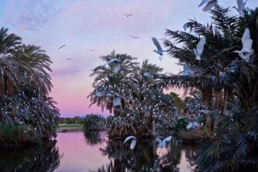 Marokko – ein Fest für alle Sinne