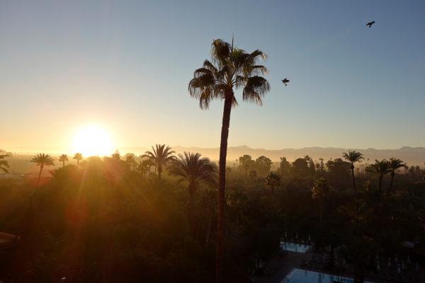 Marokko Sonnenaufgang La Mamounia